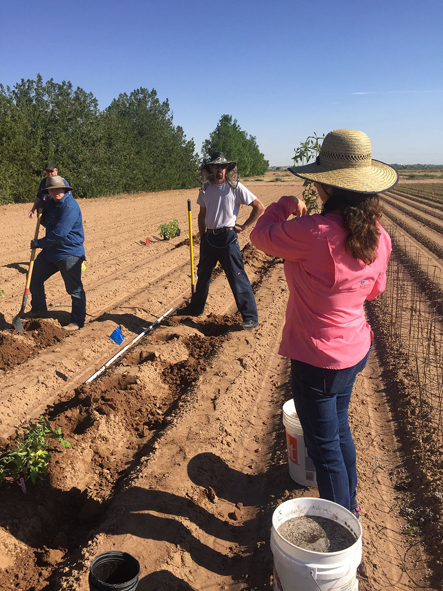 Dr. Marisa Thompson explaining to the workers the differences in the planting research